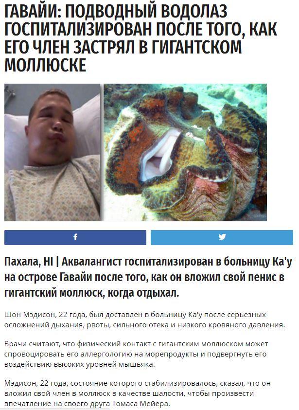 МОЛЮСК